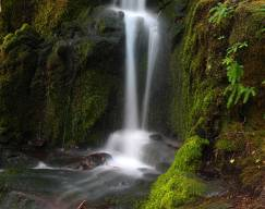 silver-falls-wa